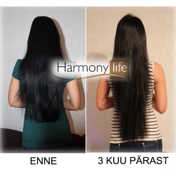 hairjazz shampoo en lotion